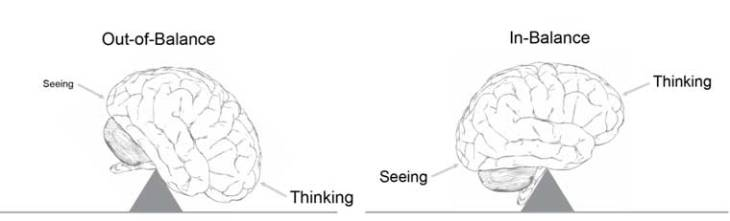 brain-balance-perception-cognition-horisontal