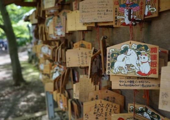 150717-gotokuji-cat-temple-tokyo-statues-cats-maneki-neko-11